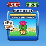【パワプロアプリ】大輪の華が咲いたで!さぞ優しくて人気なんやろな…【PSRガチャ券結果】(矢部速報)